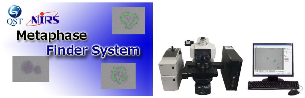 分裂中期細胞自動検出システム