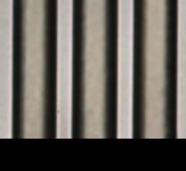 線幅_レジスト