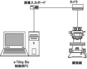 systemL.jpg